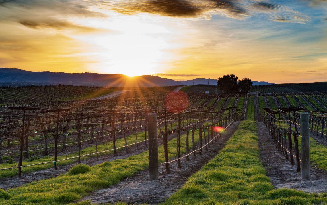 Napa e Sonoma Valley California