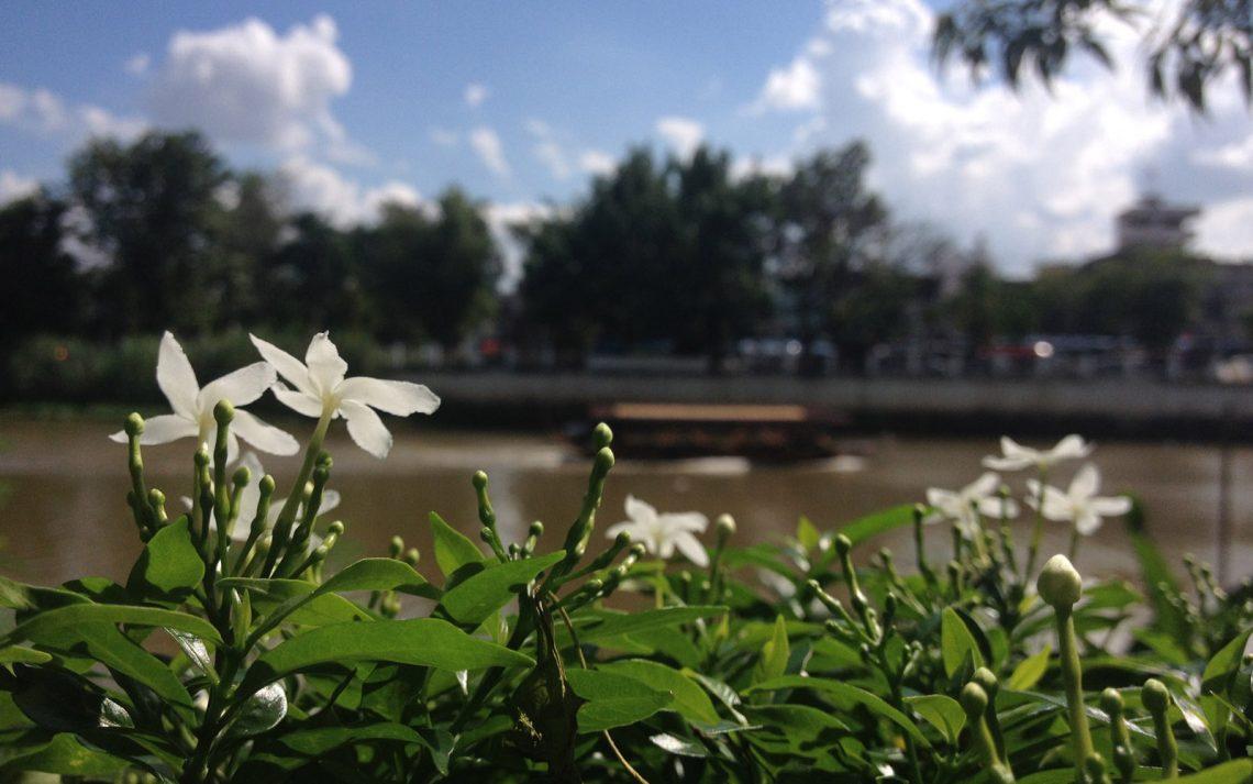 Expat sito di incontri Bangkok fare nave da crociera equipaggio hook up