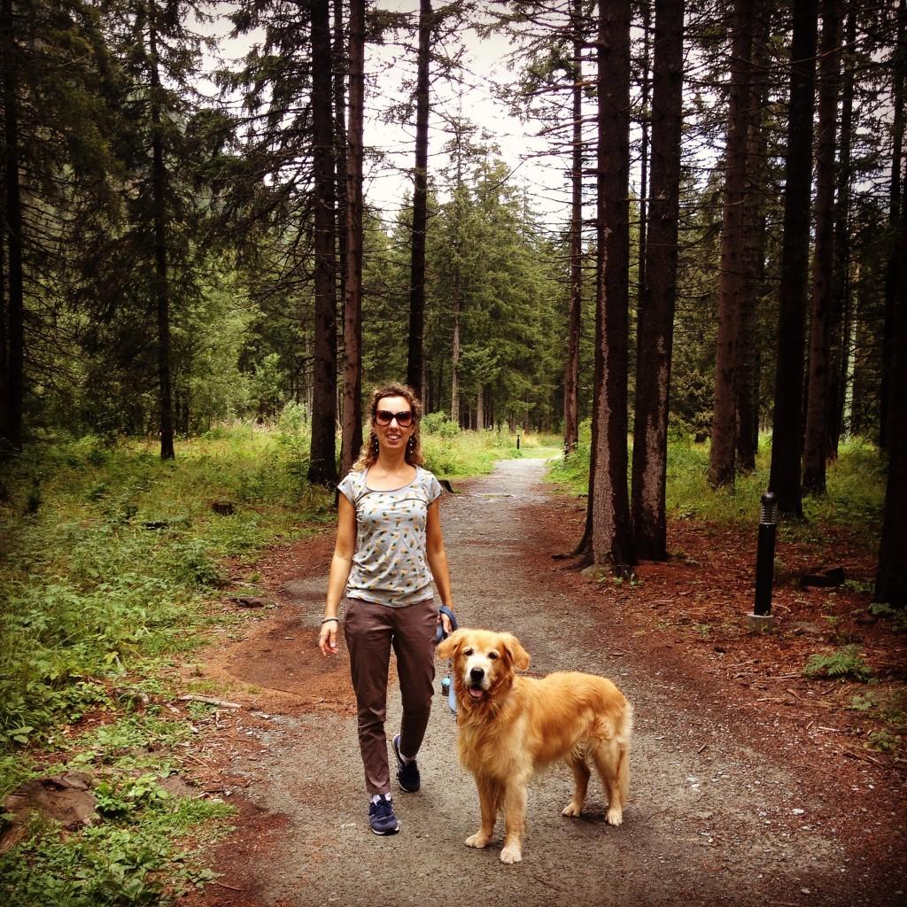 Passeggiata nel bosco a Champoluc.