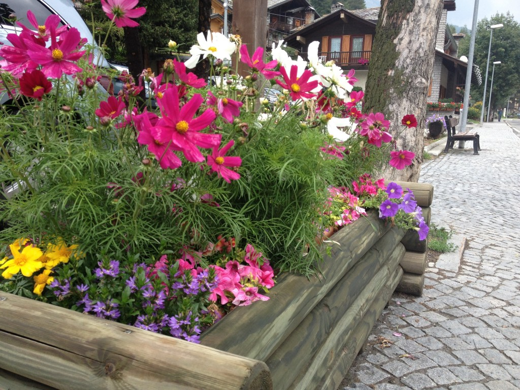 Una splendida fioriera a Champoluc.