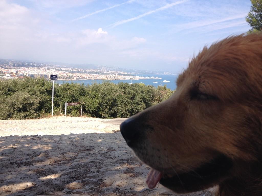 Insieme al mio cane Felakuti a Cap d'Antibes.