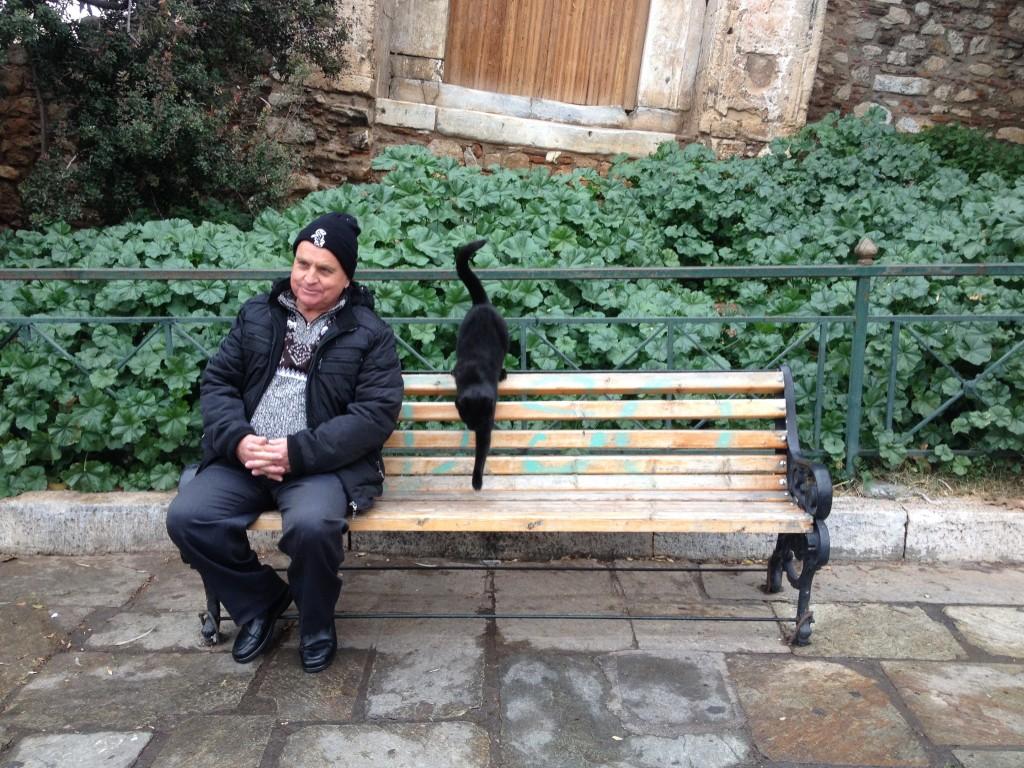 Uno dei tanti gatti che gironzolano ad Atene
