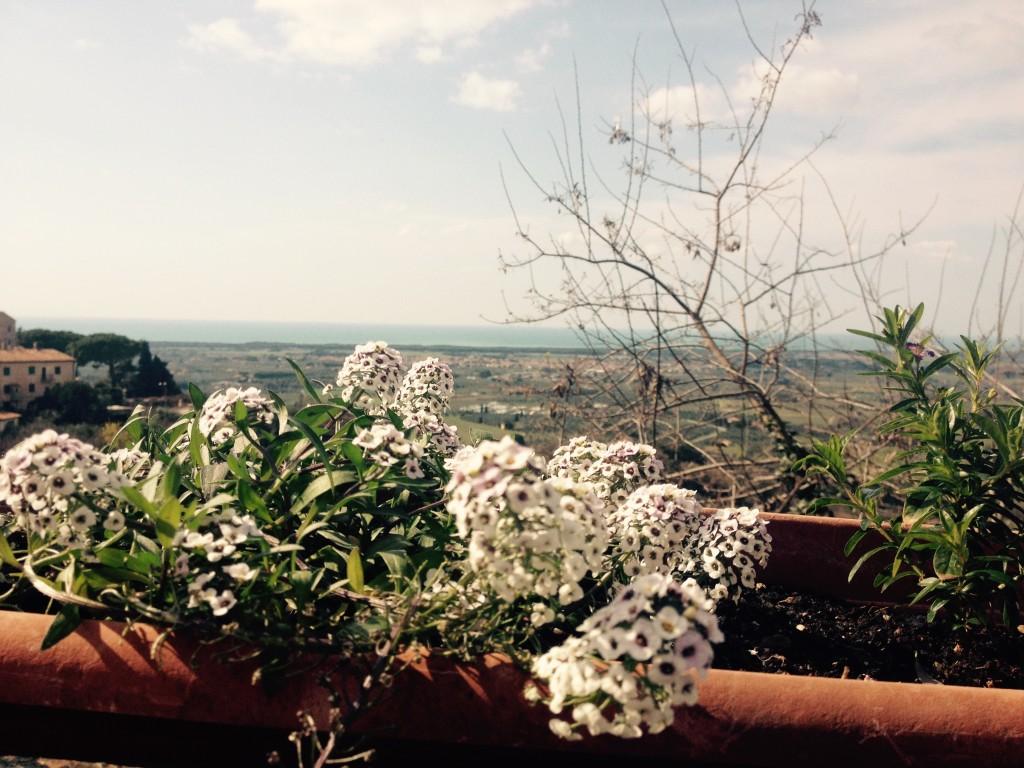 Castagneto Carducci e il mare, all'orizzonte. @oltreilbalcone