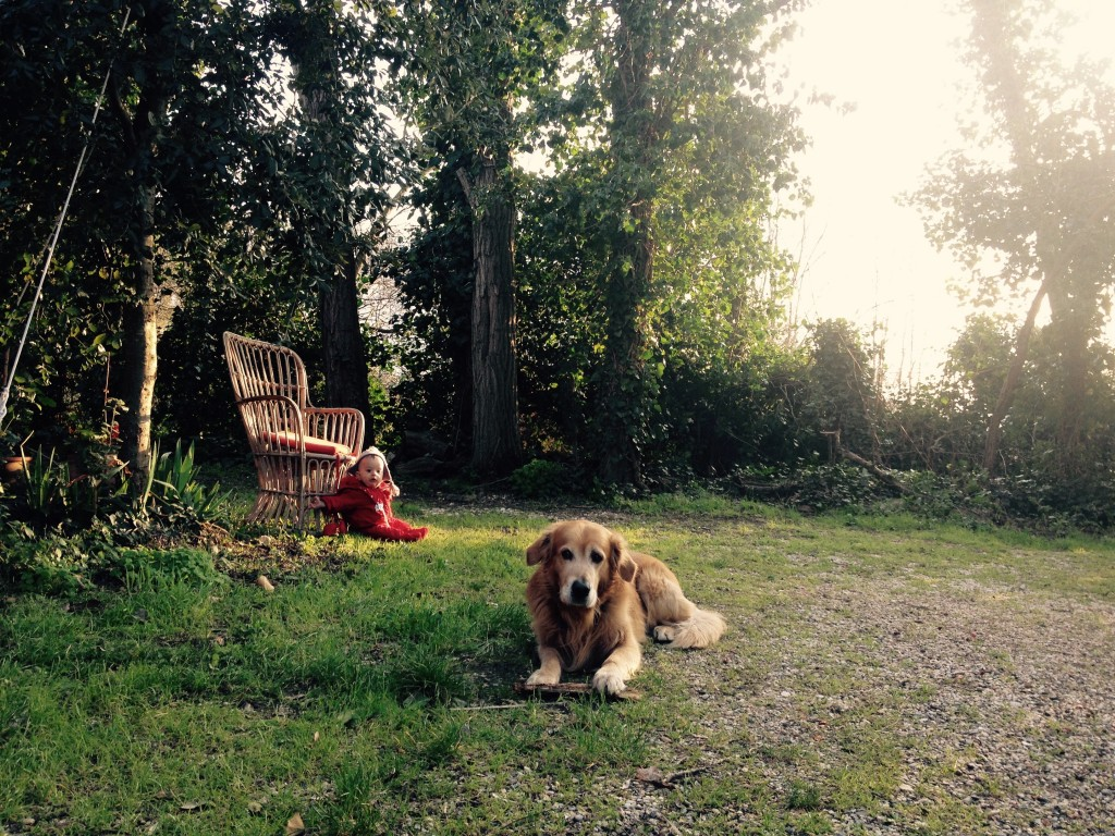 Nella tenuta Podere Princi, con il mio cane Felakuti e il piccolo Pietro, figlio di un'amica. @oltreilbalcone