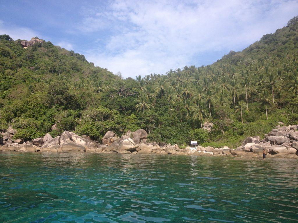 La giungla e il mare verde smeraldo dove ci si immerge per fare snorkeling o diving