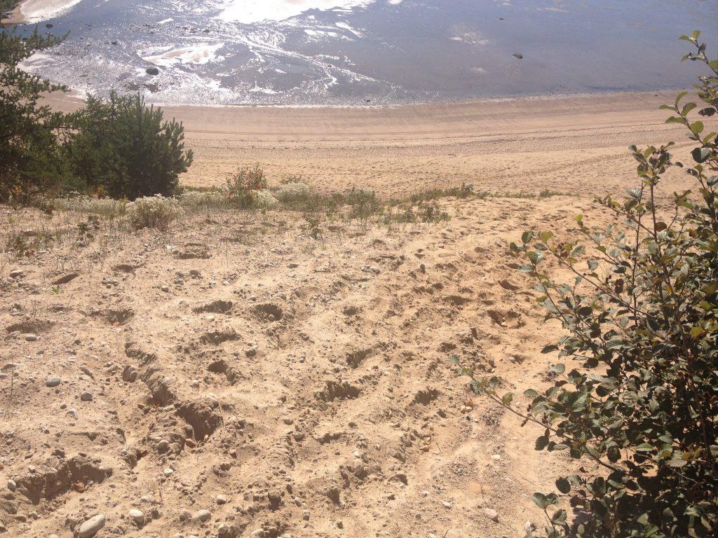 Le dune di sabbia di Tadoussac.