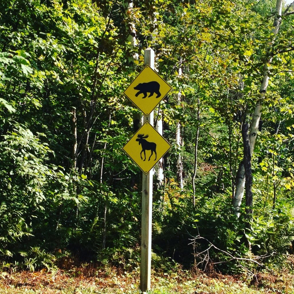 Parco del Saguenay. @oltreilbalcone