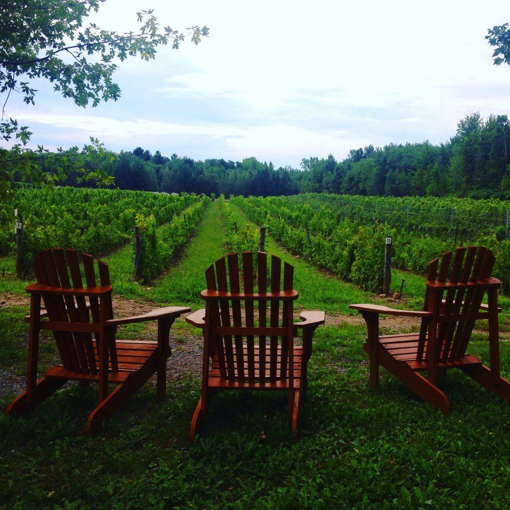 La tenuta vinicola Les Pervanches, una delle tante con certificazione biologica.