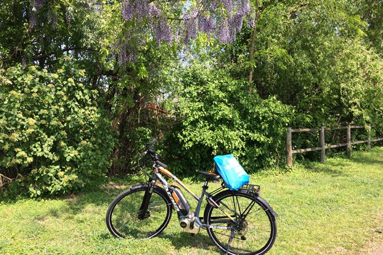 e-bike di Atala sul prato, davanti ad un glicine in fiore