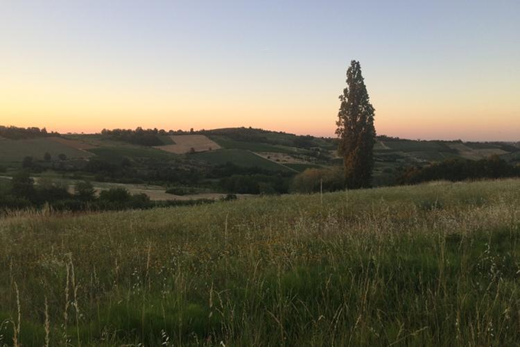 I Colli Tortonesi, la terra del Timorasso, al tramonto