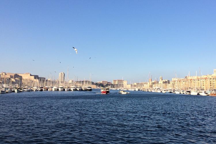 Vieux Port di Marsiglia, dove si trovano molti ristoranti: mare, barche attraccate e gabbiani che volano