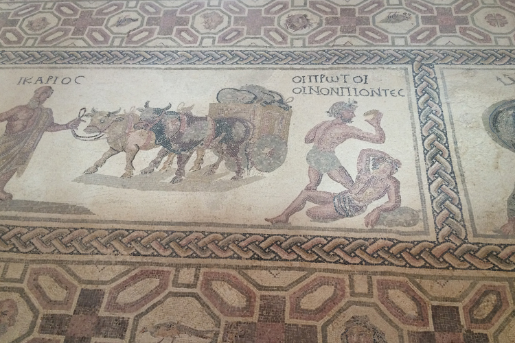Uno degli antichi mosaici conservati al Parco Archeologico di Pafos.