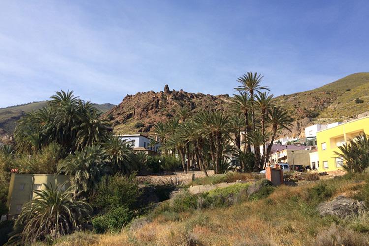 Uno scorcio del paesino Alhamilla, tra le palme.