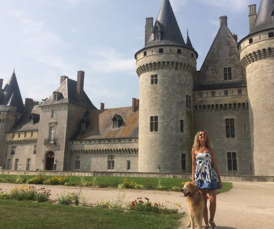 Giardini Castelli Loira cane