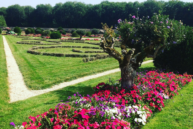 Il Giardino di Diana nel Castello di Chenonceau