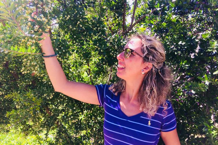 Ragusa e Modica, colori e sapori dell'autunno in Sicilia