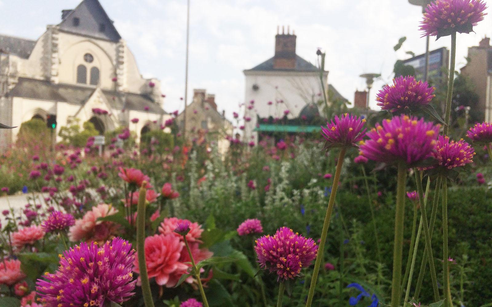 Uno scorcio di Orléans in fiore