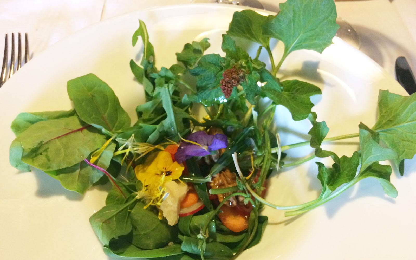 Colorata insalata di erbe spontanee del Baldo e fiori eduli