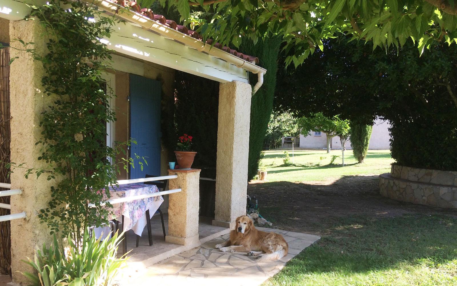 Il mio cane Felakuti si gode la frescura, fuori dalla nostra camera da letto da Au Bien Être.