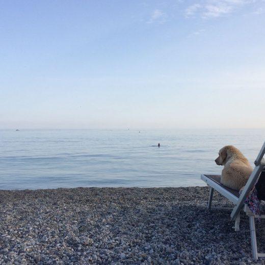 Varigotti 20 Riviera spiaggia per cani Liguria