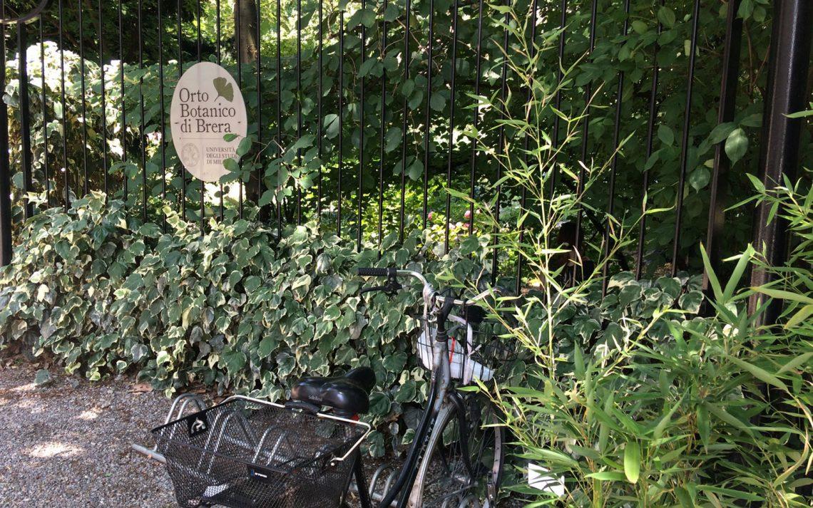 Orto botanico di brera il giardino segreto di milano for Giardino botanico milano