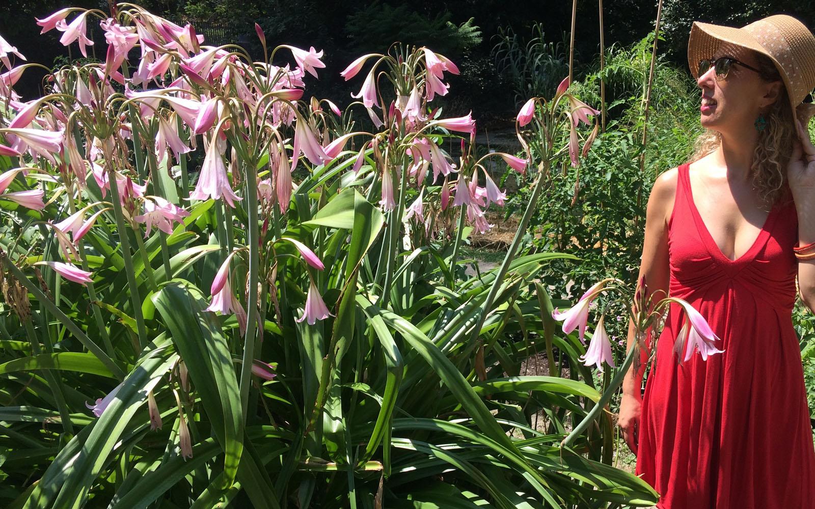 Tra i fiori, nell'Orto Botanico di Milano.