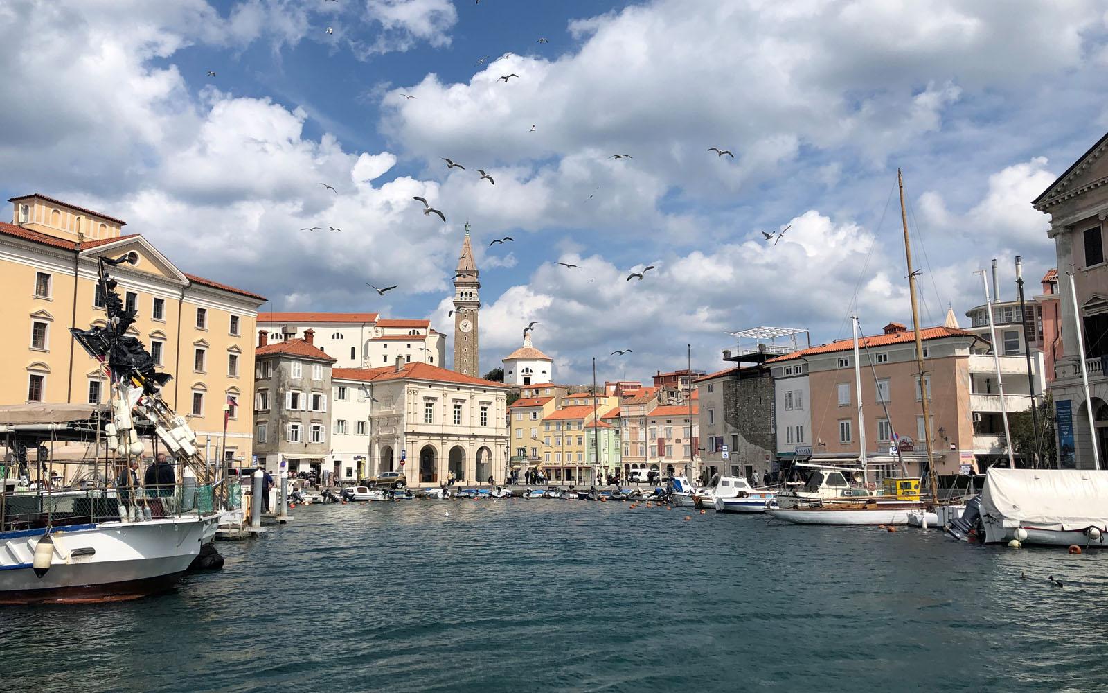 Scorcio di Pirano, nell'Istria slovena.