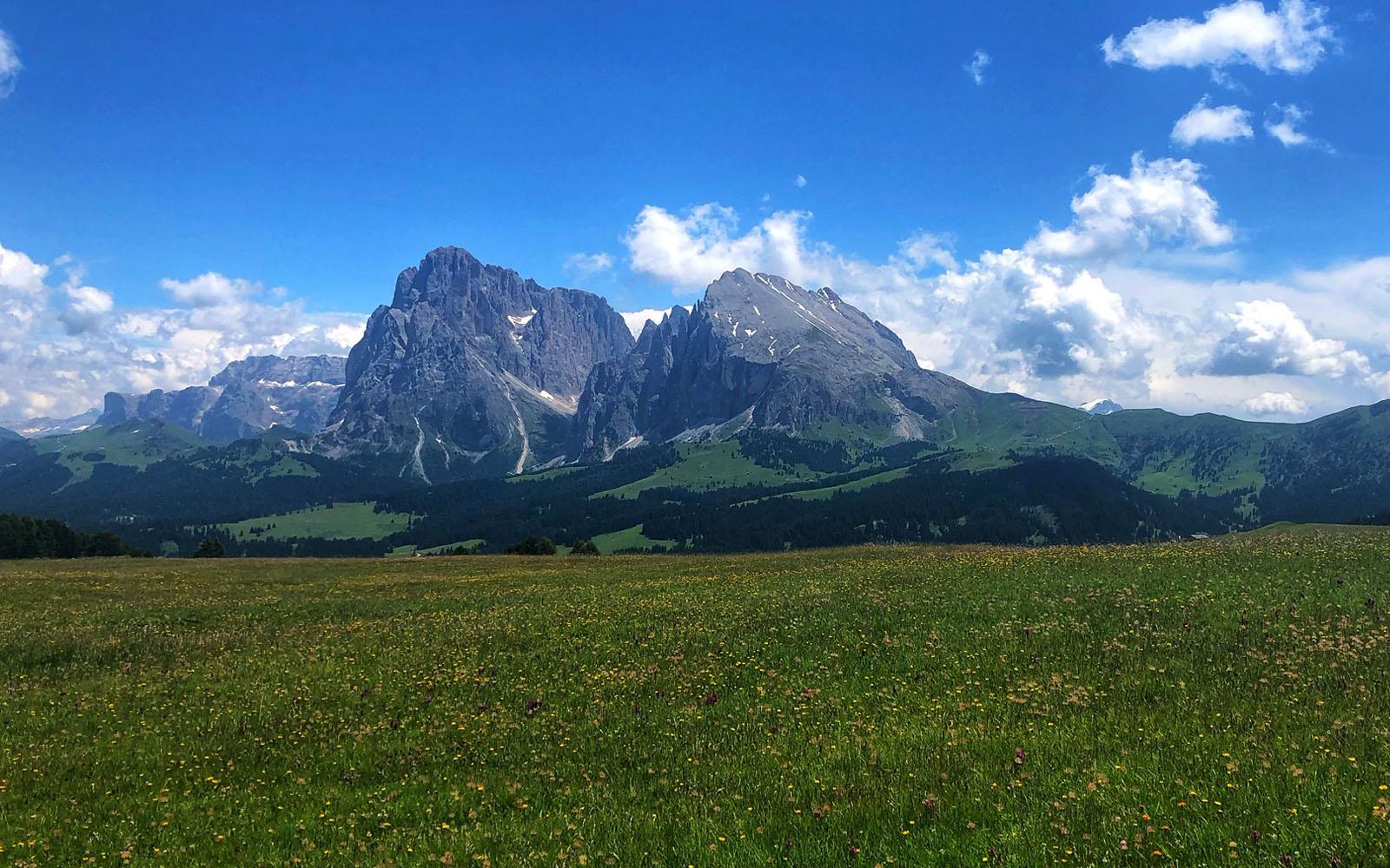 Veduta del Sassolungo e del Sassopiatto dall'Alpe di Siusi.