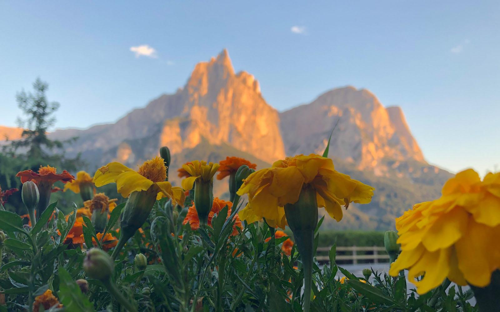 Uno scorcio del massiccio dello Sciliar, all'Alpe di Siusi.