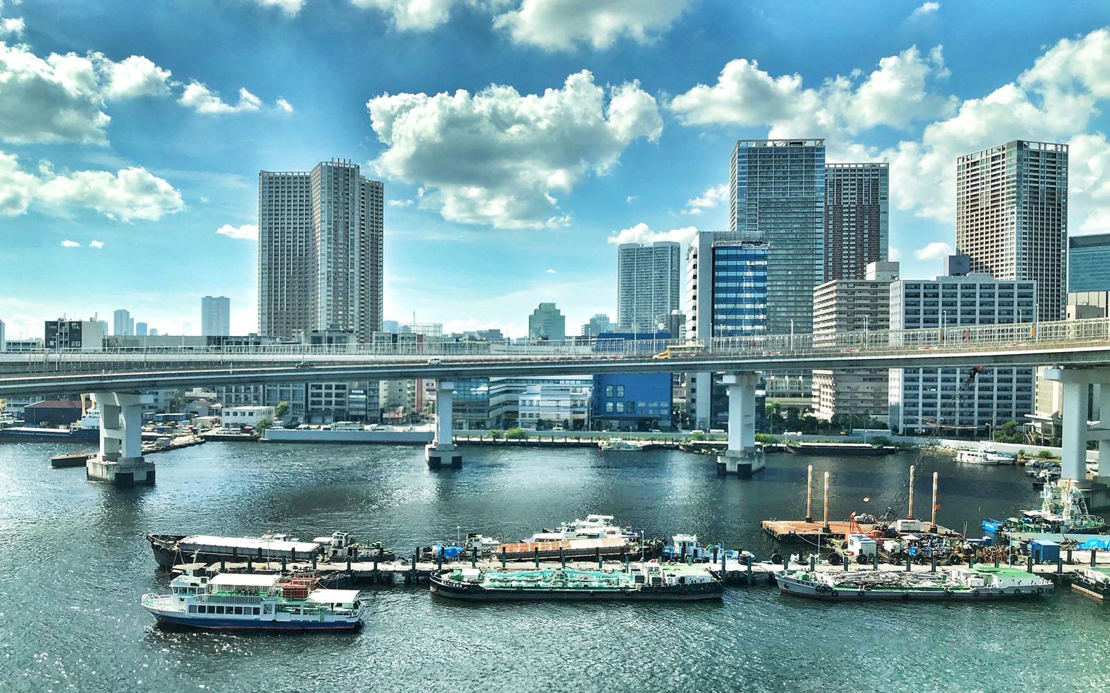 Uno scorcio di Tokyo.