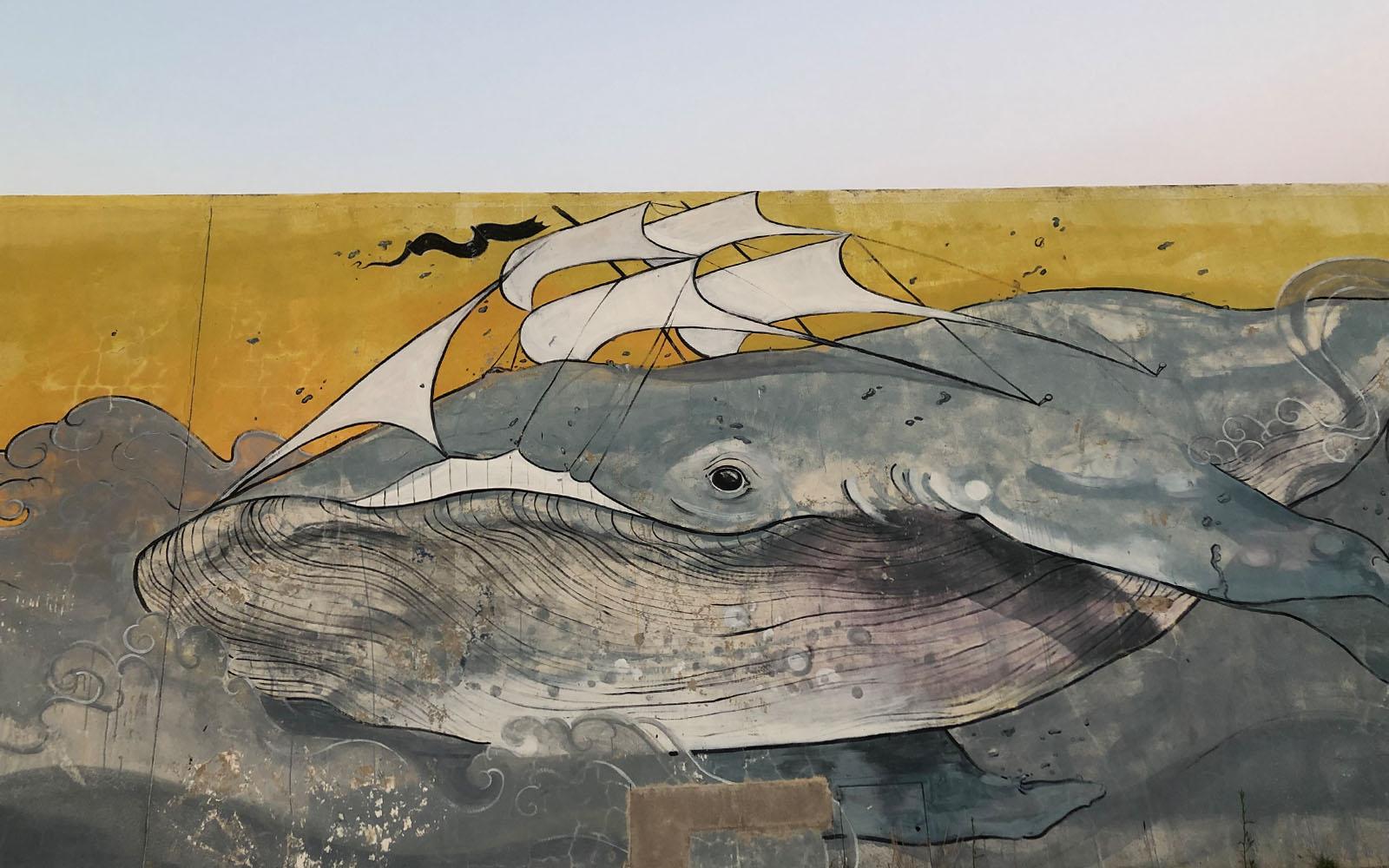 Una delle opere di street art del progetto Vedo a Colori.