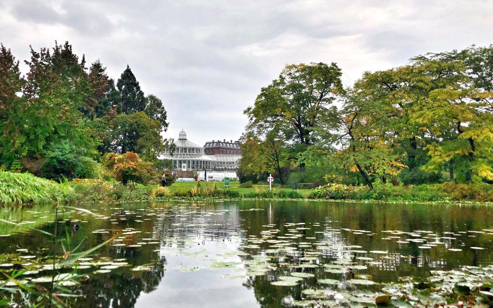 Il Giardino Botanico di Copenaghen la suggestiva serra sullo sfondo. © oltreilbalcone