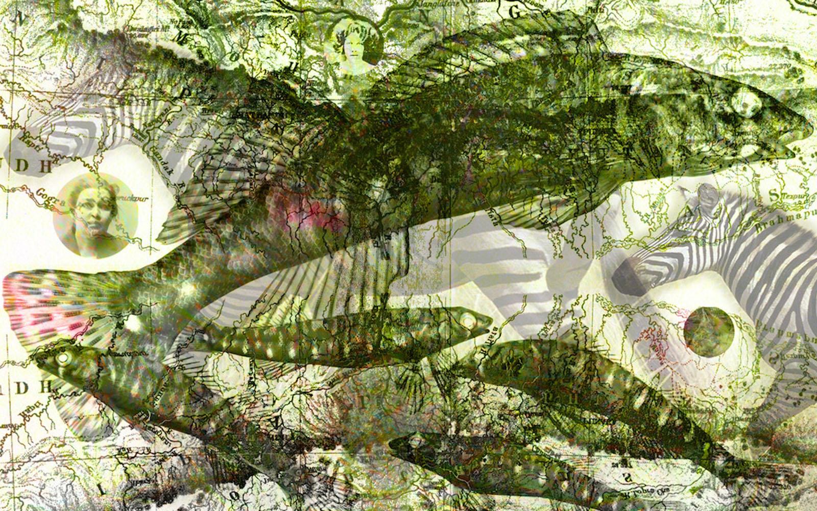 L'opera 'Giardino zoologico reale'. © Daniela Gorla