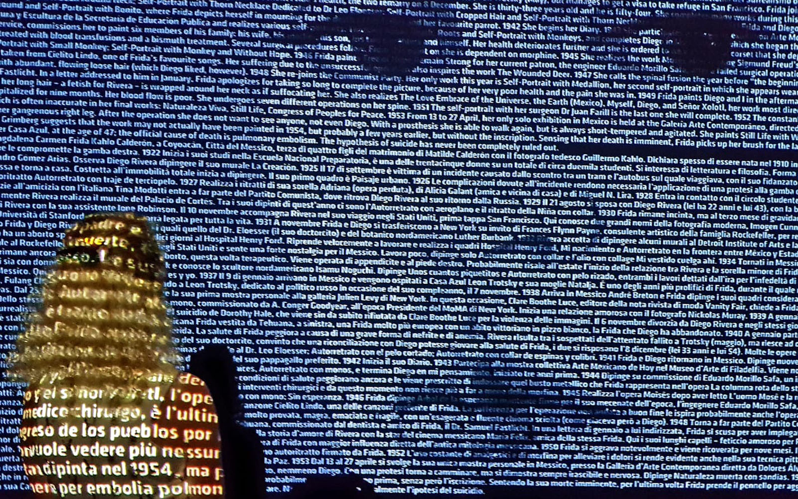 Io, di spalle, durante una mostra al Mudec di Milano (lo spazio museale al momento è chiuso come da indicazioni governative). © oltreilbalcone
