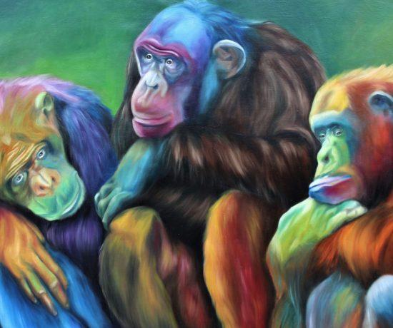Scimpanze-©-Giusi-Velloni