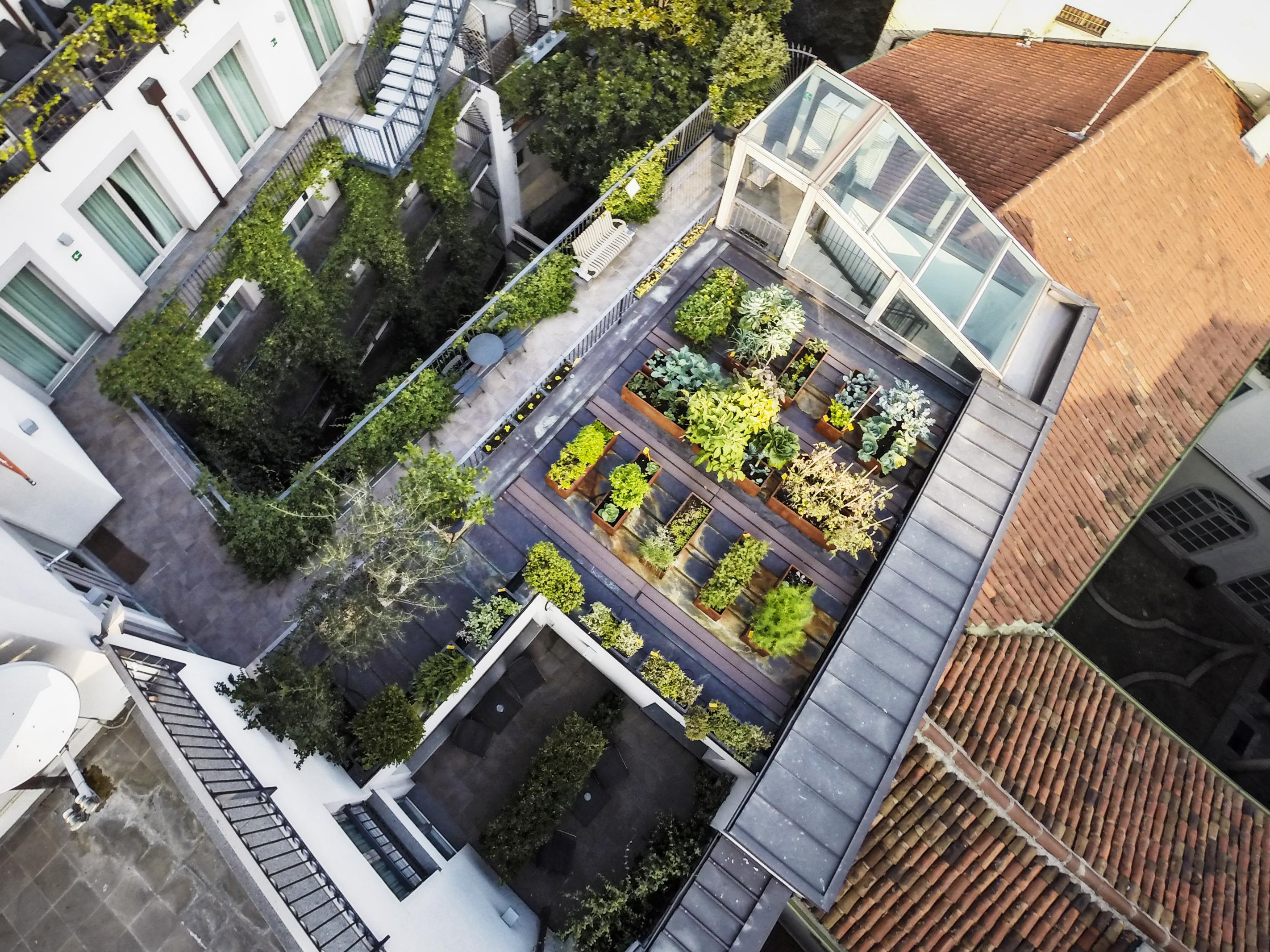 Veduta dall'alto dell'orto sul tetto dell'Hotel Milano Scala