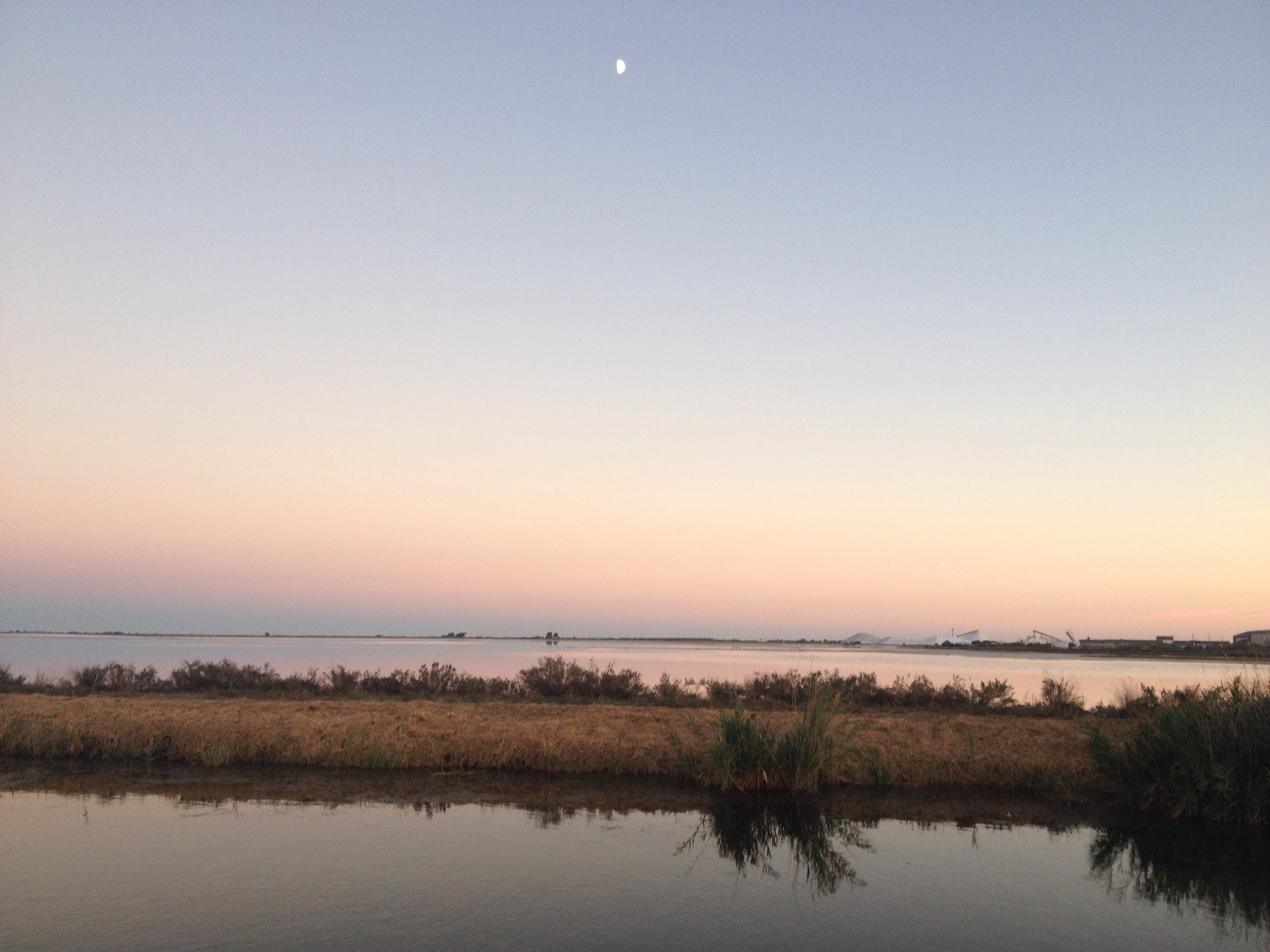 Tramonto in Camargue.