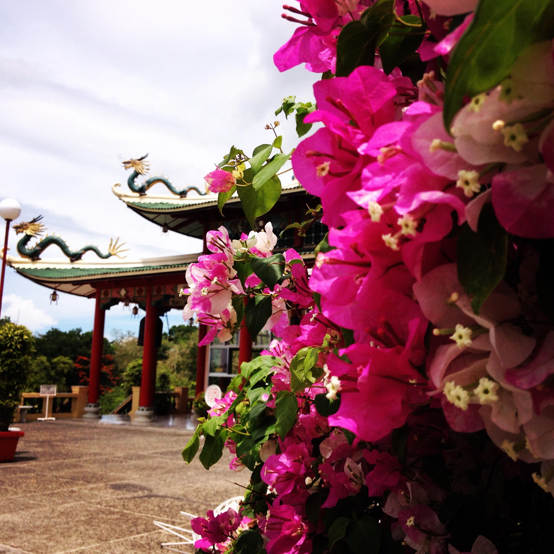 Taoist Temple @oltreilbalcone