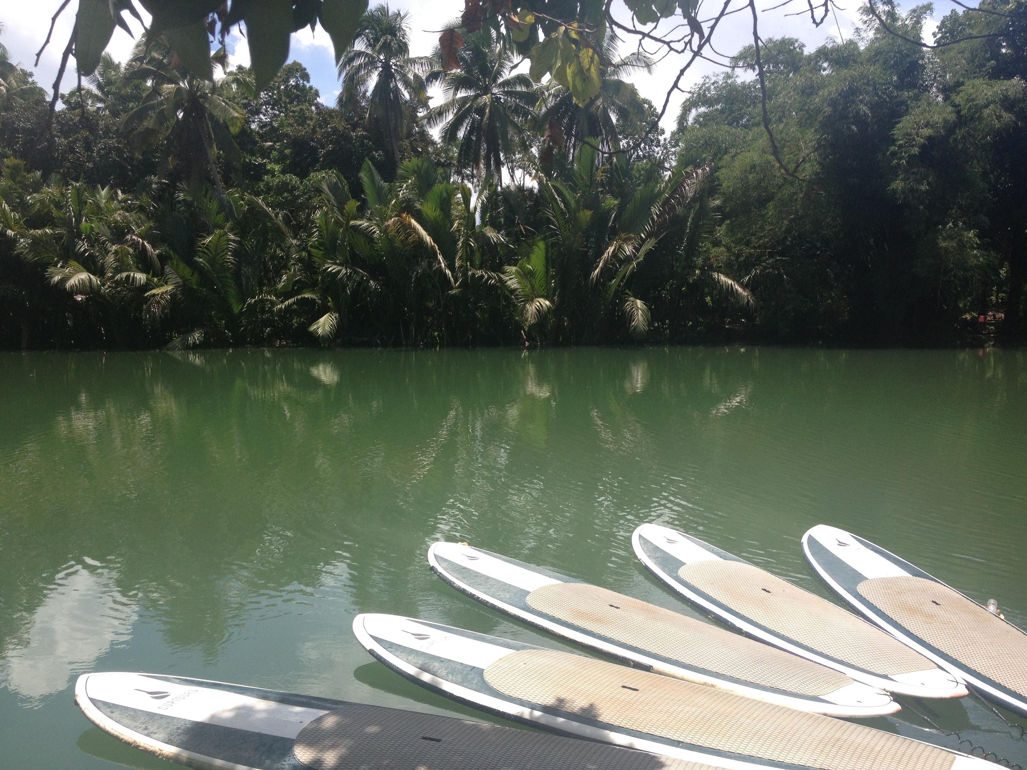 SUP sul fiume Loboc @oltreilbalcone