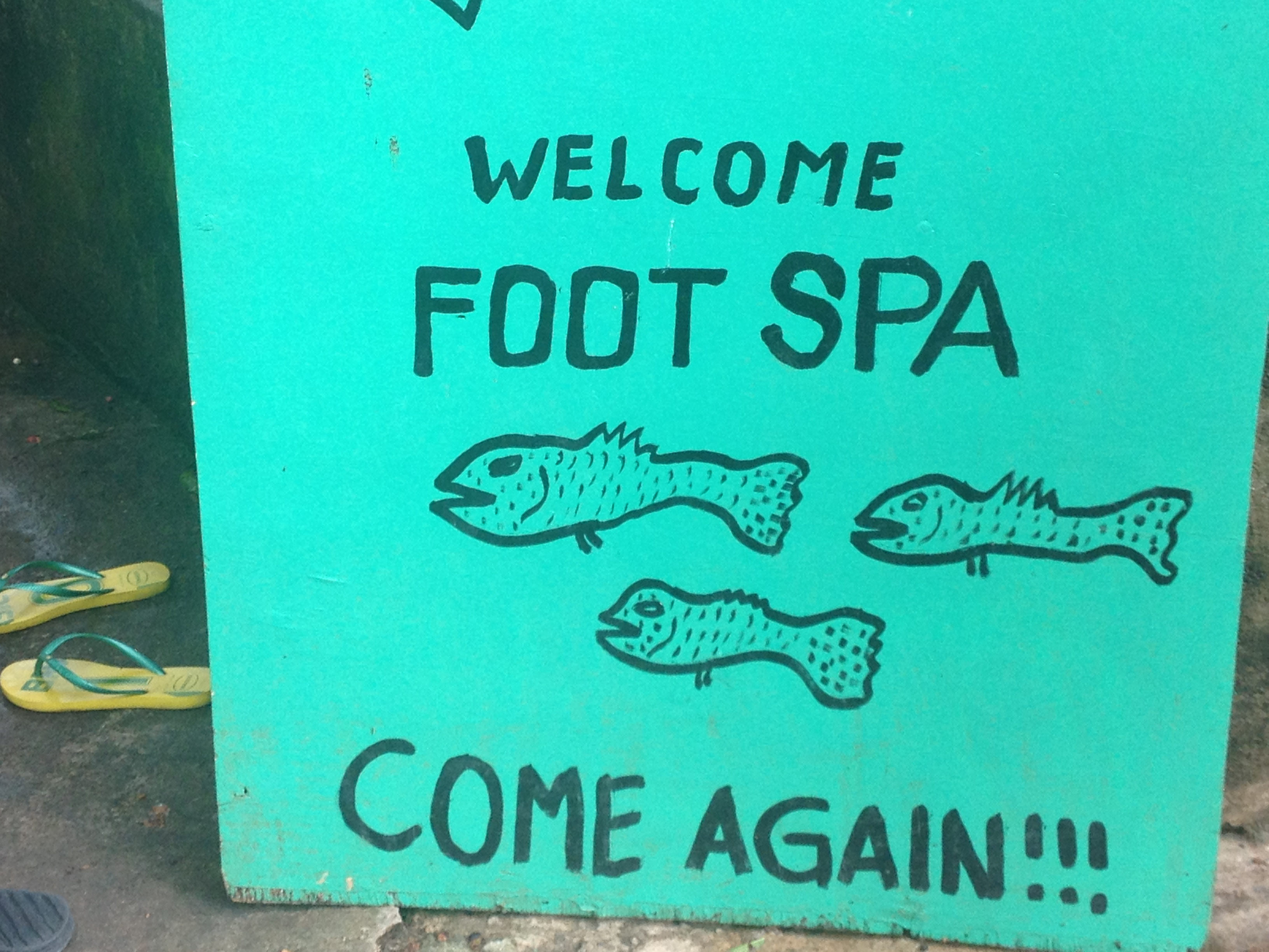 Fish SPA, Siquijor @oltreilbalcone