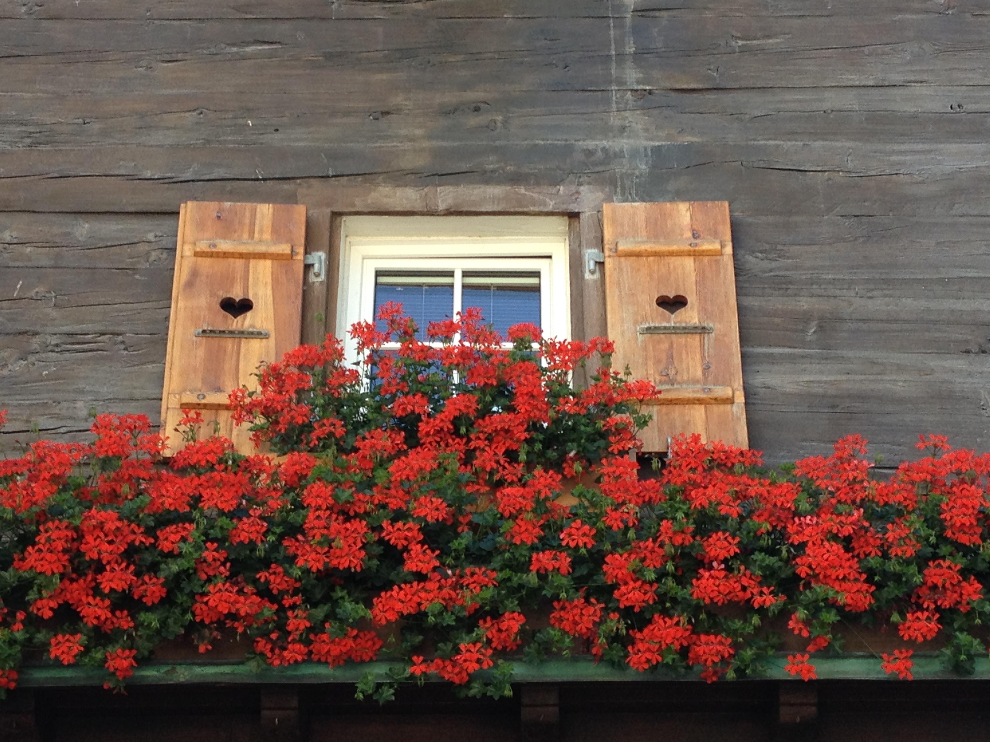 Zermatt @oltreilbalcone