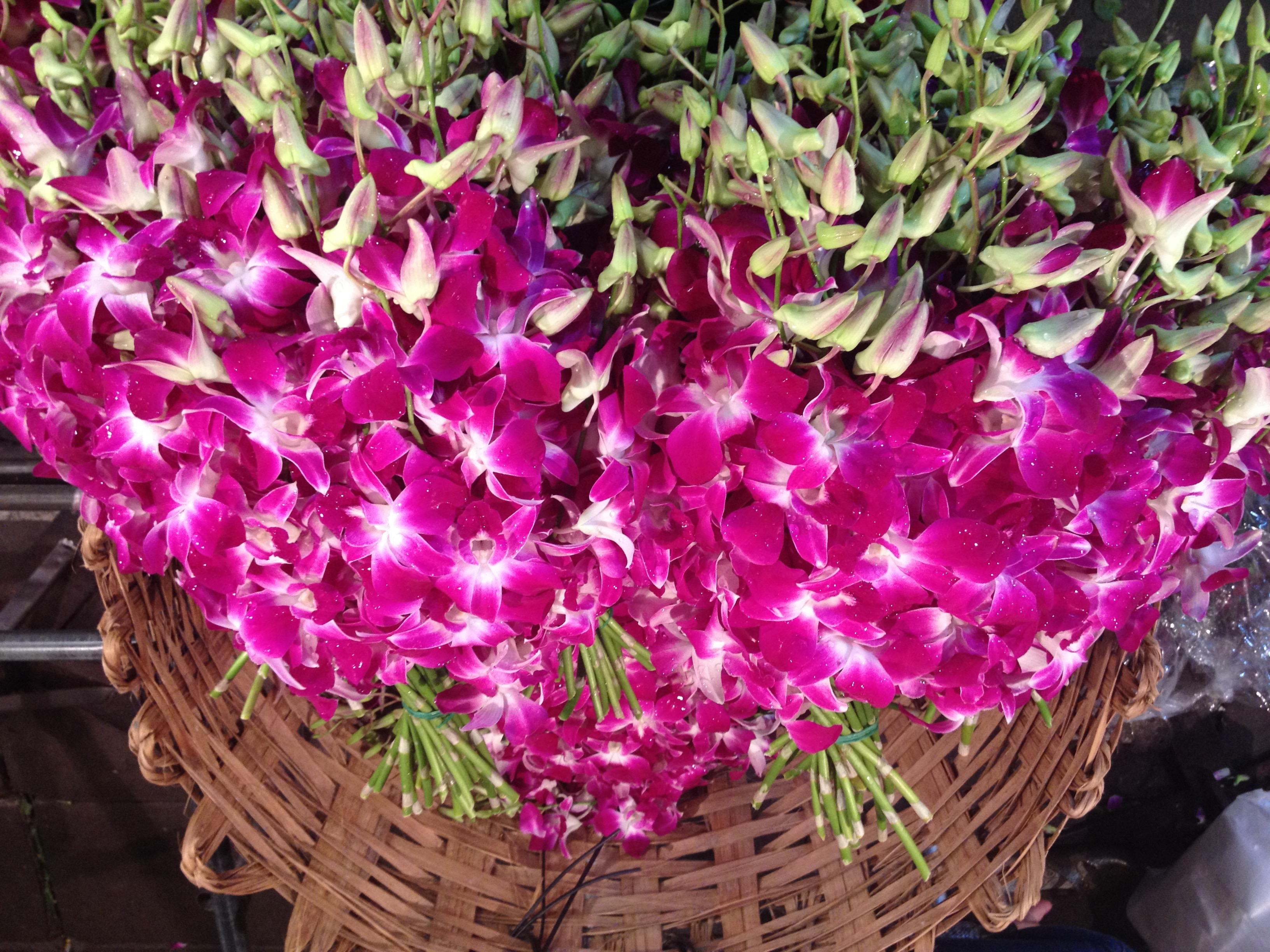 Orchidee al mercato dei fiori, Bangkok @oltreilbalcone